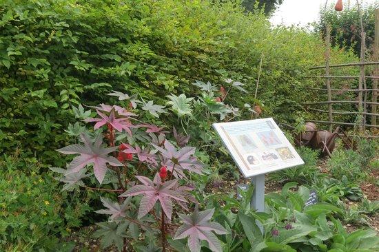 Royal Saltworks of Arc-et-Senans (La Saline Royale): Themed gardens for the 2014 season
