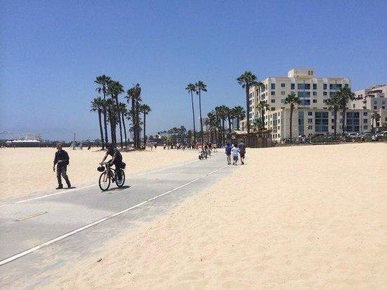 Shutters on the Beach: bike road near the hotel