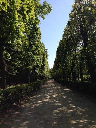 Musée Rodin : Аллеи