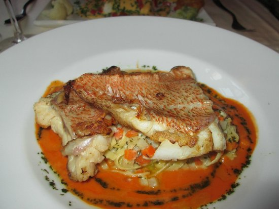 Pieter Pourbus : Red Mullet with tagliatelle