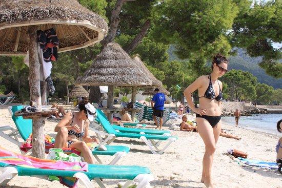 PortBlue Club Pollentia Resort & Spa: beach Formentor (20 minutes from hotel)