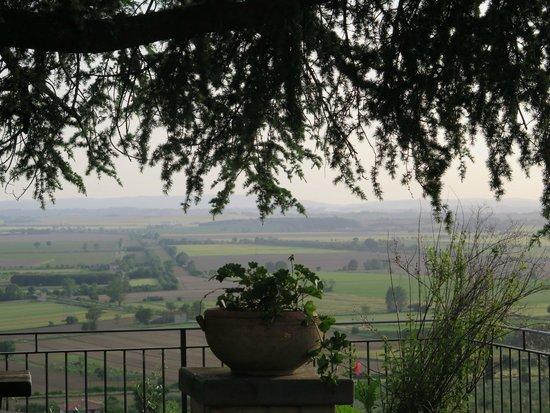 Agriturismo La Maesta: View