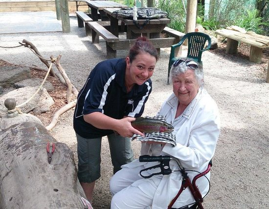 Rhyll Trout and Bush Tucker Farm: first ever fish at the age of 87yrs