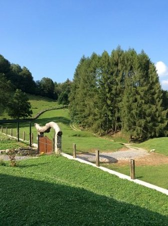Agriturismo le Radici: the view from entrance