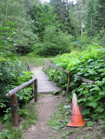 Blue Lake Resort: Path bridge