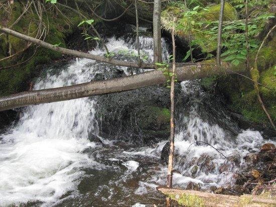 Blue Lake Resort: Waterfalls