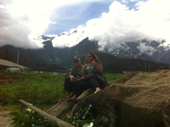 Desa Dairy Farm Loving The Scenic Background