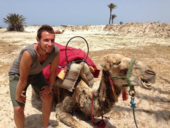 Yadis Djerba Golf Thalasso & Spa : 15