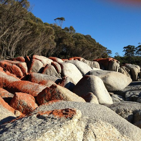 BIG4 St Helens Holiday Park: Skeleton Bay (Bay of Fires - Close to St Helens TAS)