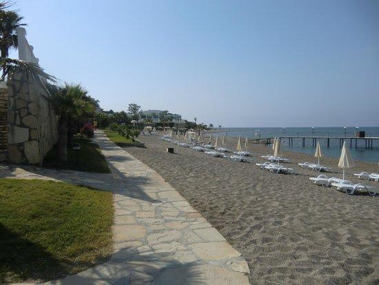 Sentido Flora Garden: strand van hotel