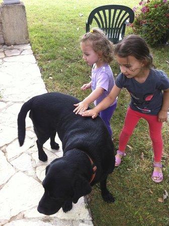 Mas Petit Fourchon : Owner's dog