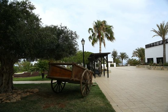 TUI MAGIC LIFE Fuerteventura: grounds