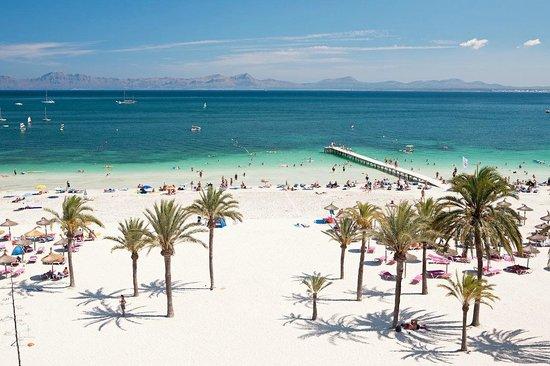 Sunwing Alcudia Beach From Nuevas Palmeras