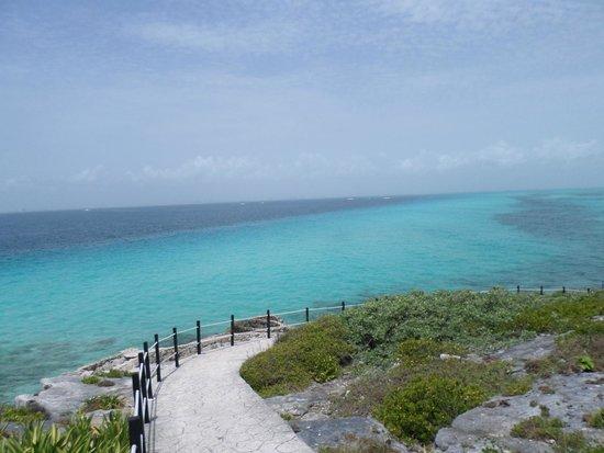 Hotel Riu Caribe: Island Trip