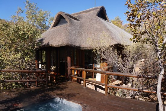 Makweti Safari Lodge: our suite from the pool deck
