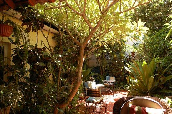 Palmeiras Guest House: indoor patio