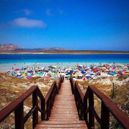La Pelosa Beach: La Pelosa