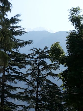 Hotel Bhagsu - HPTDC: view of snow clad mountains from hotel.. in may