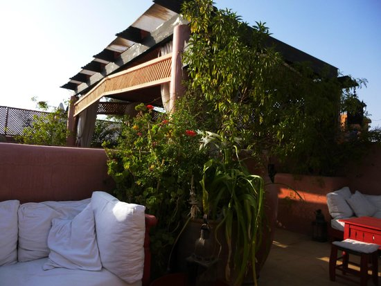 terrasse picture of riad la terrasse des oliviers marrakech tripadvisor. Black Bedroom Furniture Sets. Home Design Ideas