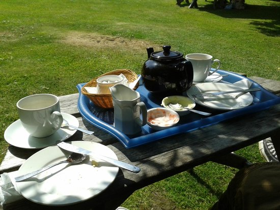 Rosemergy Farmhouse Cream Teas: Would have even licked the bowl!