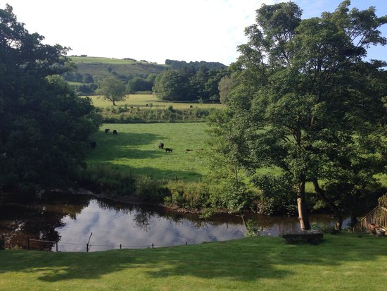 Millbrook Bed & Breakfast: The morning view from our room at Millbrook B and B
