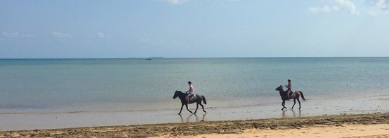 Anantara Bazaruto Island Resort: Horse riding on the beach