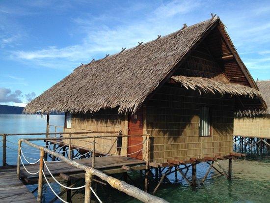 Papua Explorers Resort : Bungalow Nr. 11 Papua Explorers Raja Ampat