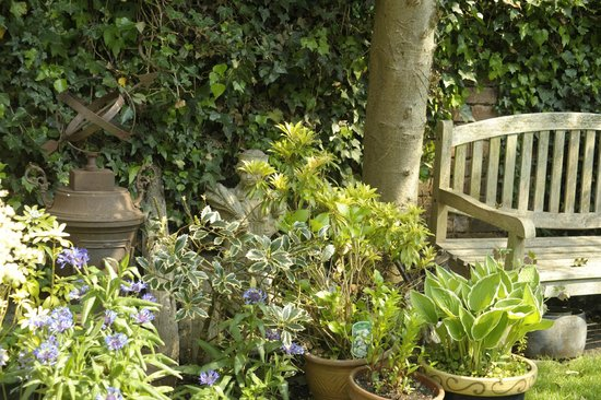 The Old Stables B&B: More of the garden
