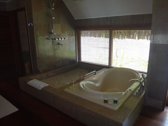 The St. Regis Bora Bora Resort: lovely big bath and shower