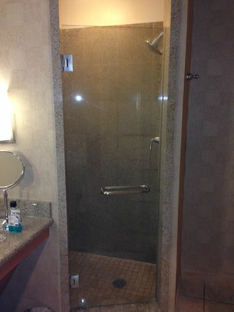 Platinum Hotel and Spa: Shower