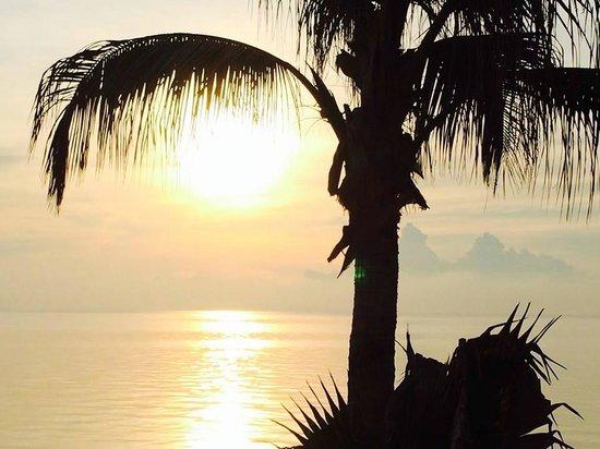 Danao Coco Palms Resort: Sunrise