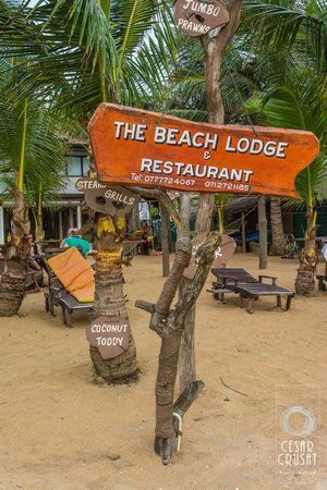 The Beach Lodge & Restaurant : Vistas desde la playa
