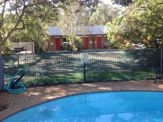 Beerwah Motor Lodge: Pool