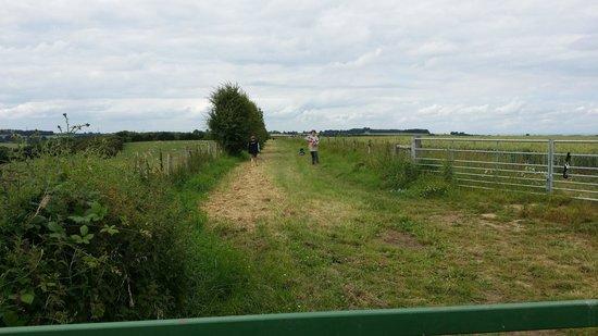 Towton Battlefield
