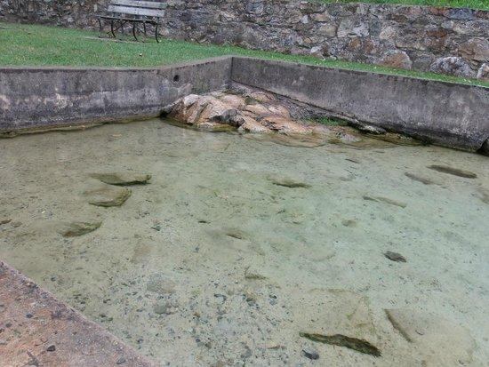Berkeley Springs State Park: Spring pool