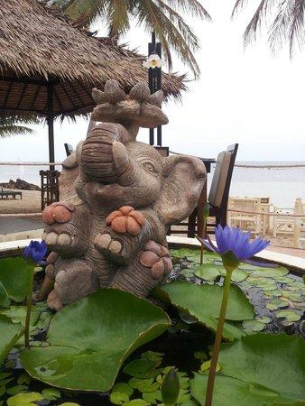 La Dolce Vita - Ristorante & Lounge Beach Bar : Vista dal ristorante