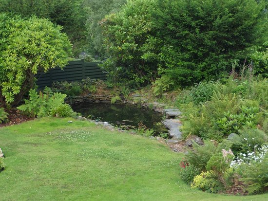 The Grange Country House : The grounds - a little pond - it had a resident rabbit