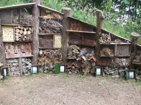 The Lost Gardens of Heligan : Insect Hotel