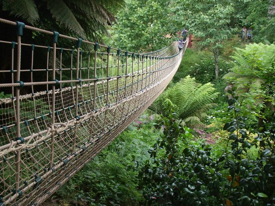 The Lost Gardens of Heligan : Jungle rope bridge