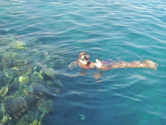 Domina Coral Bay Sultan: В море
