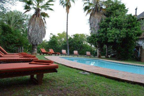 The Farm Inn: Swimming pool