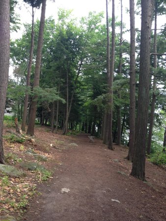 The Sagamore Resort: Take a walk on the nature path.