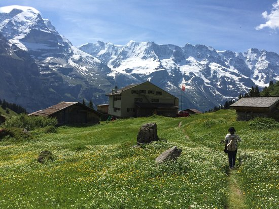 Murren, Switzerland: Valley of flower