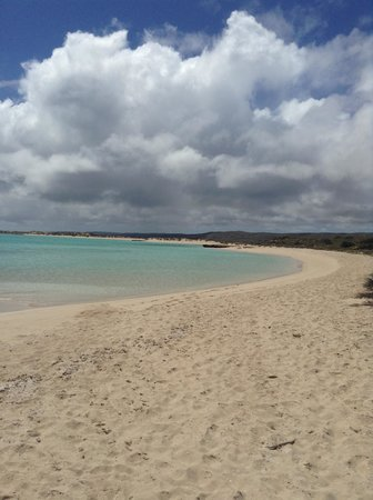 Yardie Homestead Caravan Park: Ningaloo Reef