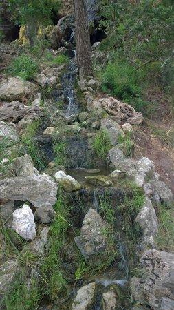 La Reserva Puig de Galatzo, Parc de Natura : водопидик