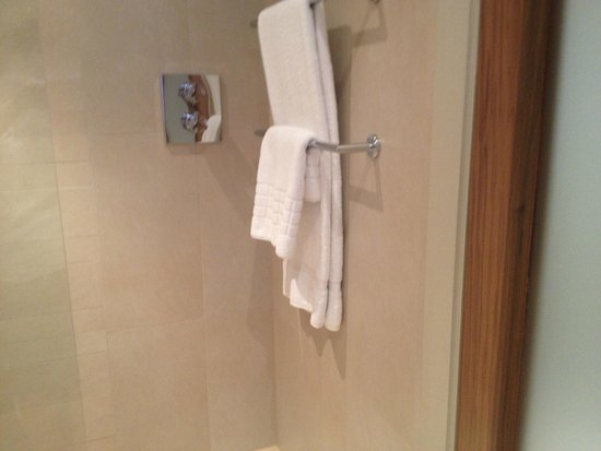 Hotel La Tour: The huge brand new shower