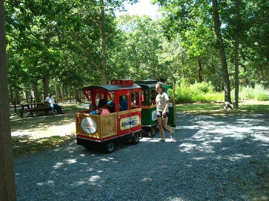 Cape May County Park & Zoo : All aboard!