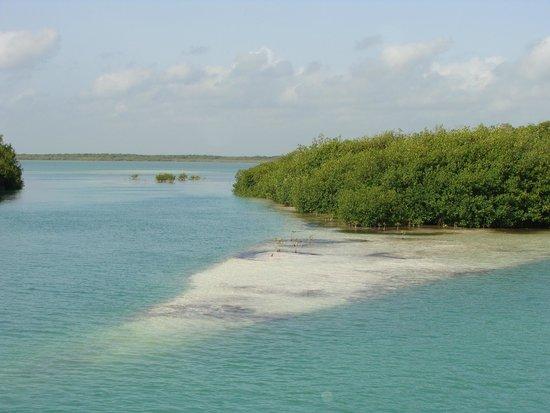 Sian Ka'an Biosphere Reserve: embouchure