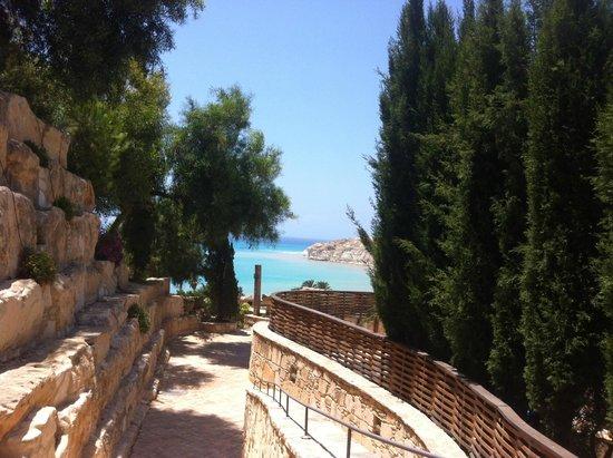 Columbia Beach Resort Pissouri : Path to Main Building from the Panorama Wing