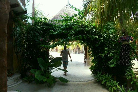 Holbox Hotel Mawimbi: Tropical Mawimbi entrance